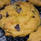 Recipe Thursday | Pumpkin Chocolate Chip Cookies