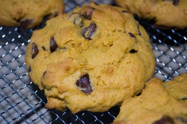 Pumpkin Chocolate Chip Cookies by DeDe Smith